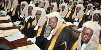 Senior advocates of Nigeria (SANs)