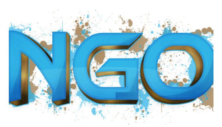 Non-governmental organisation (NGO)