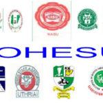 Joint Health Sector Unions (JOHESU)